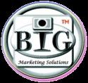 WordPress Web Site Design Marketing Services Logo
